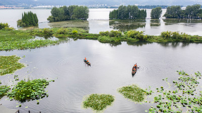 Aerial photo shows that maintenance staff work in the Yongchang Wetland Park by the Dianchi Lake in Kunming, capital city of southwest China's Yunnan Province